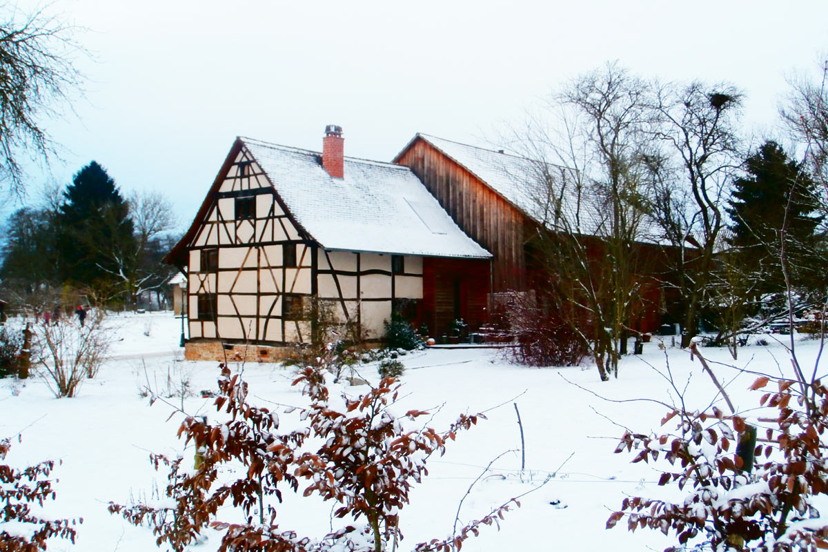 L'hiver au Liseron